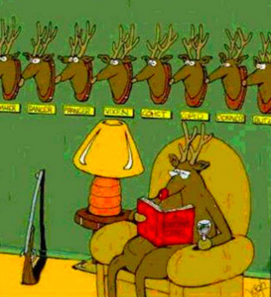 Reindeer Christmas Joke