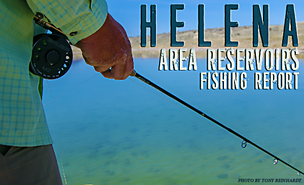 Helena area reservoirs fishing report image