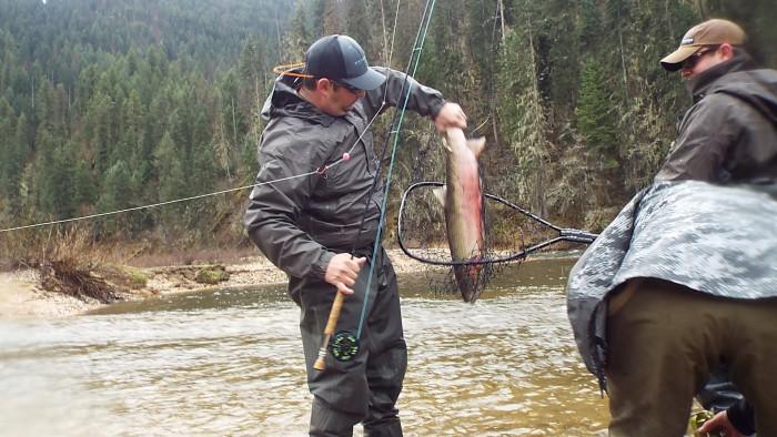 Idaho steelhead fishing montana hunting and fishing for Idaho fish and game hunter report