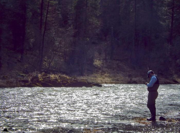 Montana fishing report montana hunting and fishing for Hebgen lake fishing report