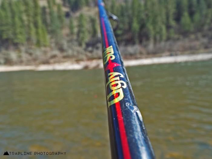 ugly stick