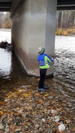 Fishing nearing bridges