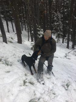 Found hound