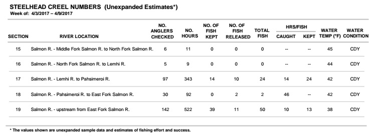Upper salmon river weekly steelhead summary report 4 09 for Idaho fish and game hunter report