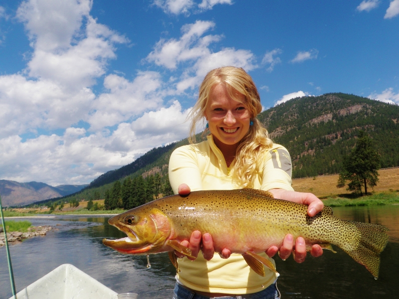 Clark Fork River Fishing Report By The Kingfisher 7 14 17