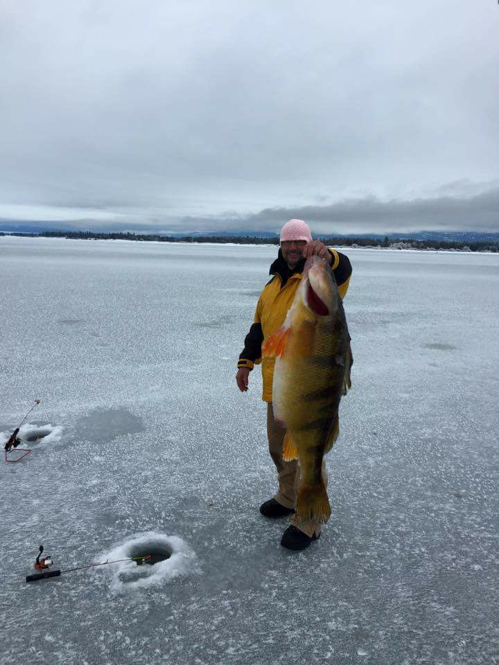 """World Record Perch"" Post Ruffling Feathers"