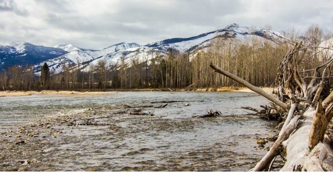 Bitterroot river fishing report by grizzly hackle for Bitterroot river fishing report