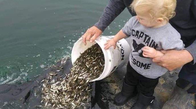 bait shop struggling